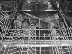Bild von einer Spülmaschine